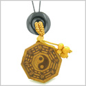 Yin Yang BaGua Trigrams Car Charm or Home Decor Black Agate Lucky Donut Protection Powers Amulet
