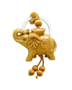 Amulet Magical Money Ingot Elephant Good Luck Charm Protection Powers Feng Shui Magical Keychain Blessing